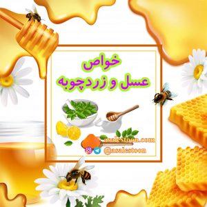 خواص عسل طبیعی و زردچوبه